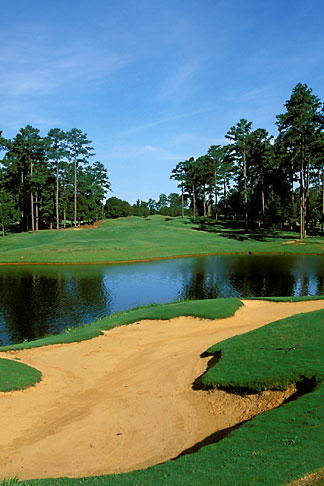 image 2-556-17 Alabama, Robert Trent Jones Golf Trail, Greenville, Cambrian Ridge, 6th hole, Loblolly