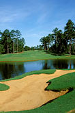 bunker stock photography | Alabama, RTJ Golf Trail, Greenville, Cambrian Ridge, 6th hole, Loblolly, image id 2-556-17