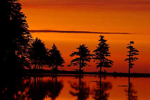 image 5-650-1060 Alaska, Kodiak, Fort Abercrombie State Historical Park, sunrise