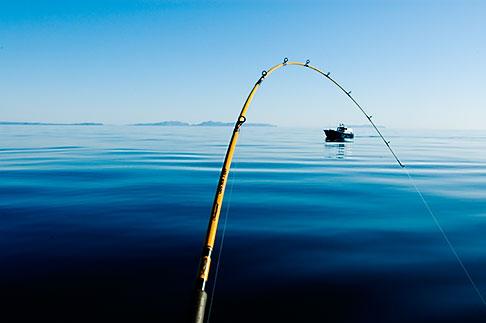 image 5-650-4119 Alaska, Kodiak, Fishing pole