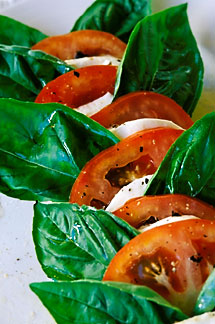 4-600-85 stock photo of Antigua, Harmony Hall, Caprese salad, homemade mozzarella with tomatoes and fresh basil