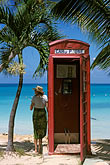 telephone box stock photography | Antigua, Dickenson Bay, Telephone booth and palms, image id 4-601-10