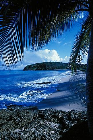 image 4-601-62 Antigua, Hawksbill Beach