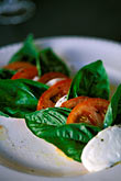 vertical stock photography | Food, Caprese salad, homemade mozzarella with tomatoes and fresh basil, image id 4-601-70