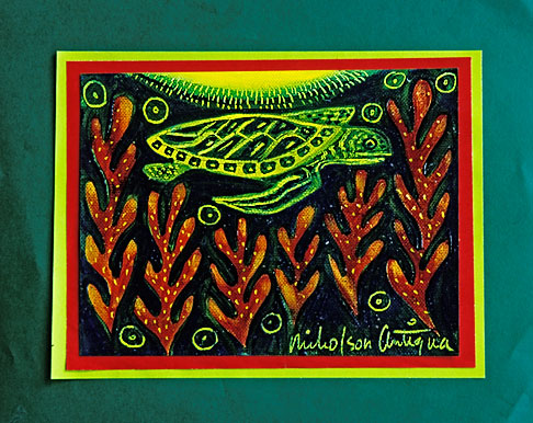image 4-604-67 Art, Nancy Nicholson, Sea Turtle painting