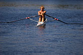 solo stock photography | Sport, Rowing on the Yarra River, image id 5-600-8478