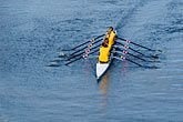 australia stock photography | Sport, Rowing on the Yarra River, image id 5-600-8595