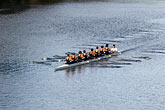teamwork stock photography | Sport, Rowing on the Yarra River, image id 5-600-8625