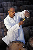 wine barrel stock photography | Barbados, Bridgetown, Jerry Edwards, master blender, Mount Gay Rum, image id 0-202-69