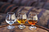 flavourful stock photography | Barbados, Bridgetown, Glasses of Mount Gay Rum, image id 0-203-74