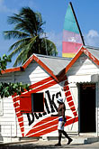 one man only stock photography | Barbados, St. James, Cyrus