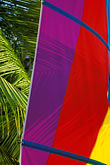 multicolor stock photography | Barbados, Sailboat sail, image id 3-388-29