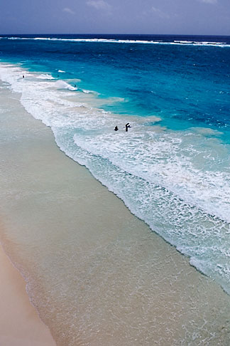 image 3-482-56 Barbados, St Philip, Crane Beach
