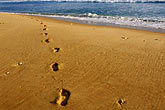 footprints on beach stock photography | Barbados, Bathsheba, Footprints, image id 3-483-49
