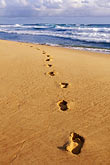 far out stock photography | Barbados, Bathsheba, Footprints in sand, image id 3-483-60
