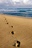 footprints on beach stock photography | Barbados, Bathsheba, Beach, image id 3-485-56