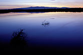 calm stock photography | California, San Francisco Bay, Don Edwards National Wildlife Sanctuary, image id 0-433-1