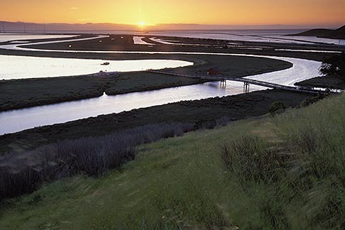 image 1-370-1 California, San Francisco Bay, Don Edwards National Wildlife Sanctuary