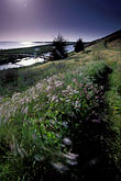 evening stock photography | California, San Francisco Bay, Don Edwards National Wildlife Sanctuary, image id 1-372-65