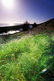 evening stock photography | California, San Francisco Bay, Don Edwards National Wildlife Sanctuary, image id 1-372-66