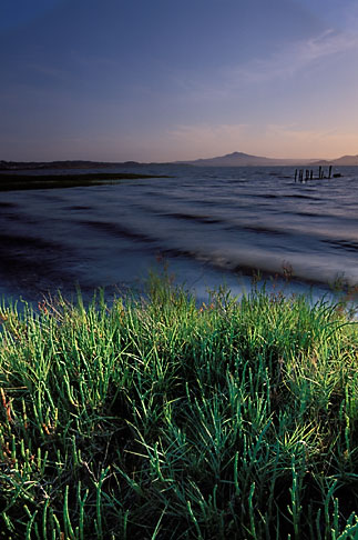 image 1-400-26 California, East Bay Parks, San Pablo Bay shoreline, Point Pinole Regional Park