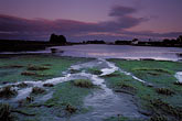 horizontal stock photography | California, San Francisco, Crissy Field, GGNRA, tidal marsh at dusk, image id 1-62-30