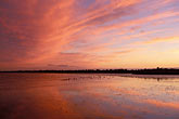 pink sky stock photography | California, San Francisco Bay, San Francisco at dusk from Hoffman Marsh, image id 1-781-9