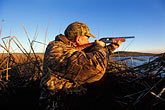 horizontal stock photography | California, Suisin Marsh, Duck Hunting, Can-Can Club, image id 1-846-15