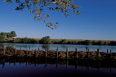 conservation stock photography | California, Delta, Georgiana Slough, Restoration weir, image id 1-855-87