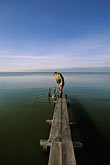 bay stock photography | California, Sonoma County, San Pablo Bay Nat. Wildlife Refuge, water sampling, image id 1-860-20