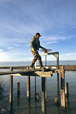 bay stock photography | California, Sonoma County, San Pablo Bay Nat. Wildlife Refuge, ranger, image id 1-860-28