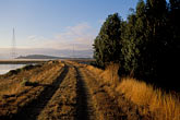 conservation stock photography | California, Sonoma County, Sonoma Baylands, image id 1-860-39