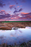 twilight stock photography | California, Sonoma County, Marsh, Tubbs Island, image id 1-98-17