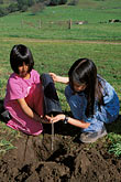 two girls stock photography | California, Marin County, McIsaac Ranch, STRAW program creek restoration, image id 2-216-42