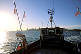 herring fisherman stock photography | California, San Francisco Bay, Herring Boat in early morning, image id 2-232-72
