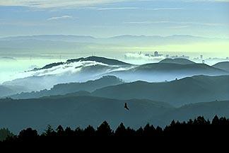 2-236-11  stock photo of California, Marin County, San Francisco and hills from Mount Tamalpais