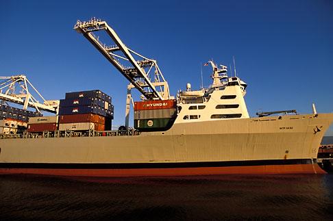 image 2-239-28 California, Oakland, Port of Oakland, APL Terminal
