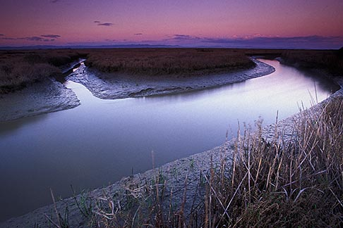 image 2-351-98 California, San Francisco Bay, San Pablo National Wildlife Refuge, slough at sunset