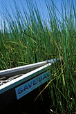 habitat stock photography | California, East Bay Parks, Arrowhead Marsh, Oakland, Canoeing, image id 2-440-11