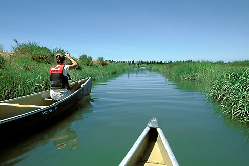 image 2-440-15 California, East Bay Parks, Arrowhead Marsh, Oakland, Canoeing