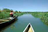 two people stock photography | California, East Bay Parks, Arrowhead Marsh, Oakland, Canoeing, image id 2-440-15