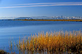 city skyline stock photography | California, Eastshore St. Park, Early morning, Richmond shoreline, image id 2-765-3