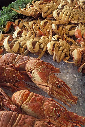 6-14-29  stock photo of California, San Francisco, Fresh crabs, Fishermans Wharf