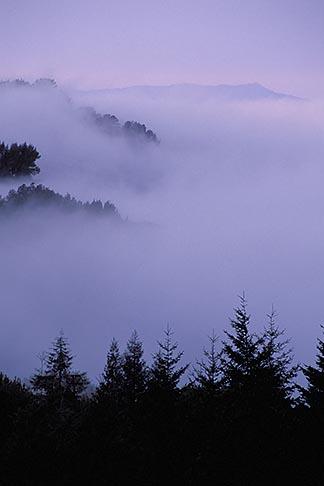 image 6-358-5 California, East Bay Parks, Fog over valley from Tilden Park