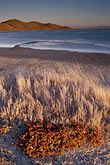 sunrise stock photography | California, San Francisco Bay, Grasses and mudflats, Coyote Hills Reg. Park, image id 7-455-4