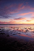 mudflats stock photography | California, Eastshore St. Park, San Francisco Bay at sunset, image id 7-593-10