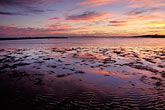 mudflats stock photography | California, Eastshore St. Park, San Francisco Bay at sunset, image id 7-593-4