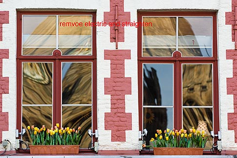 image 8-740-792 Belgium, Bruges, Windows with flower boxes and tulips