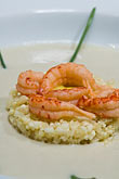 rice stock photography | Belgium, Ghent, Prawns and rice, image id 8-742-1738