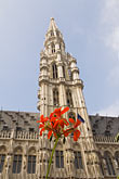 belgian stock photography | Belgium, Brussels, Town Hall, Grand Place, spire with flower in foreground, image id 8-746-2676